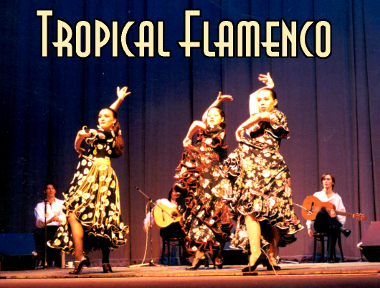 tropical-flamenco-cover.png